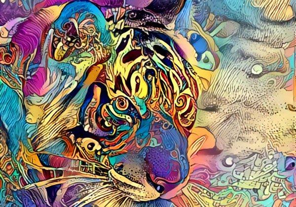 עיבוד למידה עמוקה באמצעות Deep Dream Generator. קרדיט: דרור בן דוד